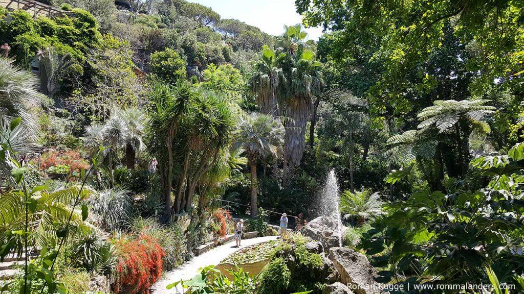 Botanischer Garten Giardini della Mortella Ischia (11)