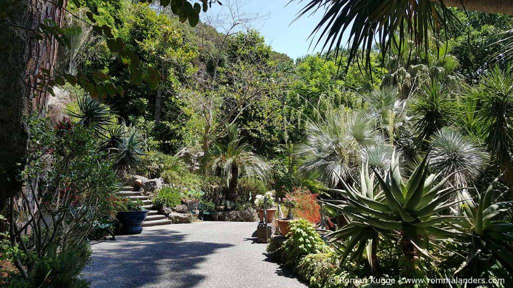 Botanischer Garten Giardini della Mortella Ischia (15)