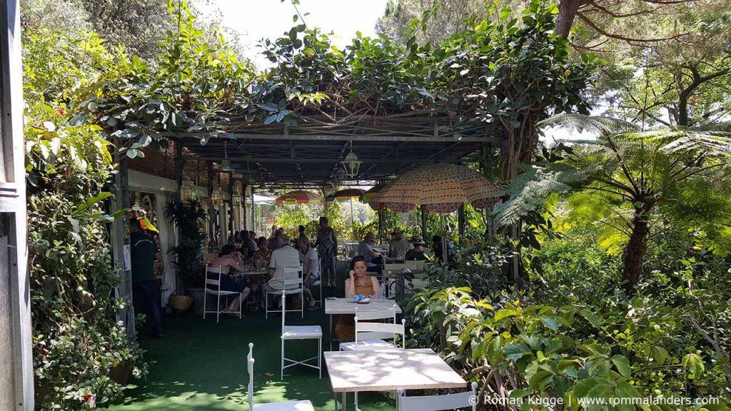Botanischer Garten Giardini della Mortella Ischia (16)