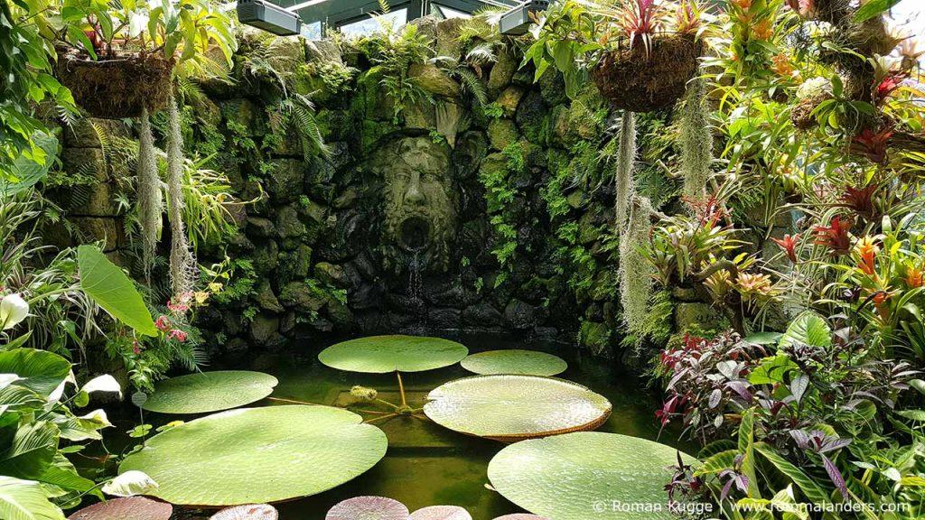 Botanischer Garten Giardini della Mortella Ischia (9)