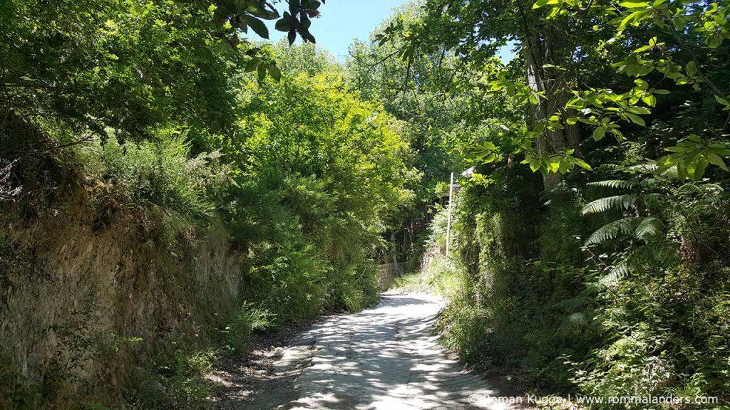 Wandern Ischia Monte Epomeo (4)
