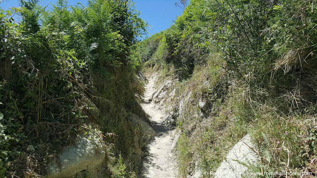 Wandern Ischia Monte Epomeo (7)
