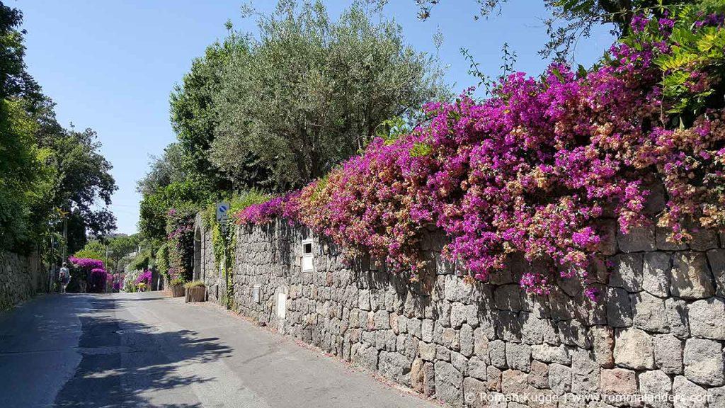 Weg vom Giardini della Mortella zum San Francesco Strand Ischia